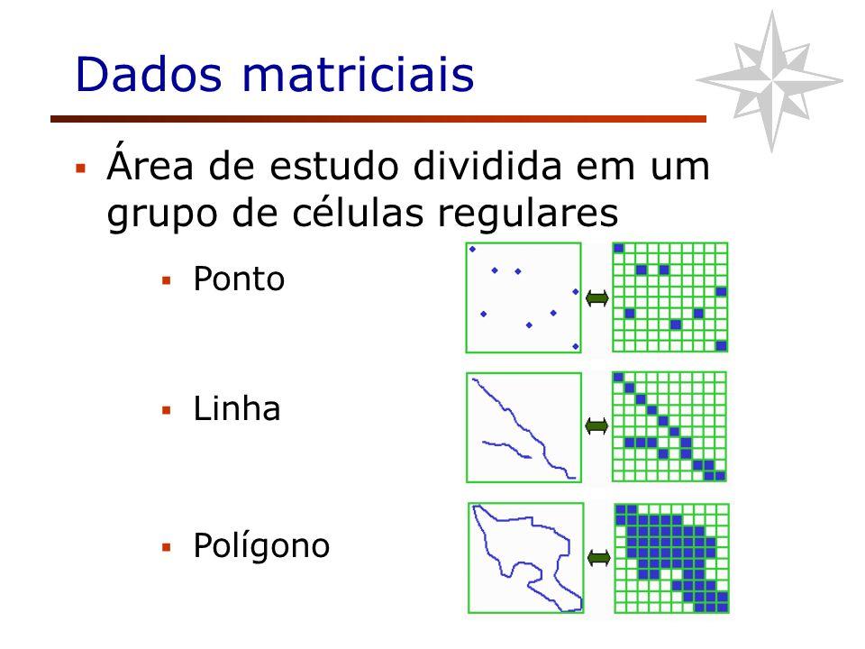 Dados matriciais Área de estudo dividida em um grupo de células regulares Ponto Linha Polígono