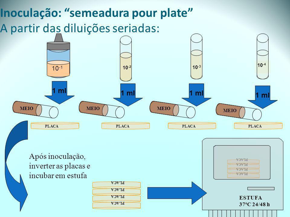 PLACA Inoculação: semeadura pour plate A partir das diluições seriadas: 10 -1 10 -3 10 -2 10 -4 1 ml MEIO PLACA Após inoculação, inverter as placas e