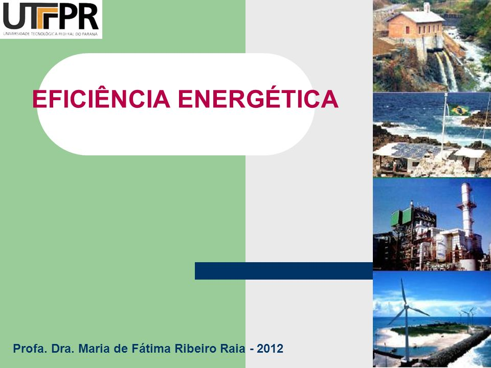 EFICIÊNCIA ENERGÉTICA Profa. Dra. Maria de Fátima Ribeiro Raia - 2012