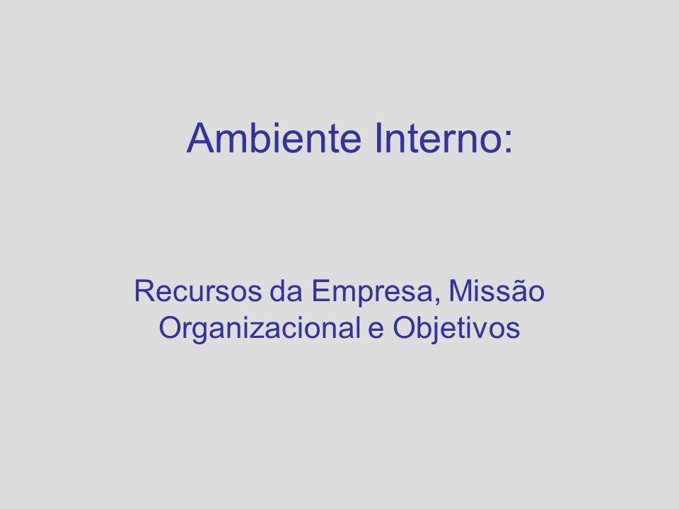 Administração de sociedade anônimas A sociedade anônima refere-se ao conselho de administração, investidores institucionais e acionistas em bloco que monitoram as estratégias da empresa para garantir a efetividade da administração.