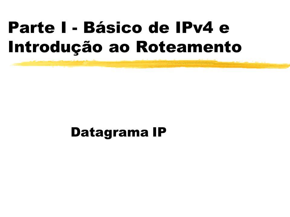 Parte I - Básico de IPv4 e Introdução ao Roteamento Datagrama IP