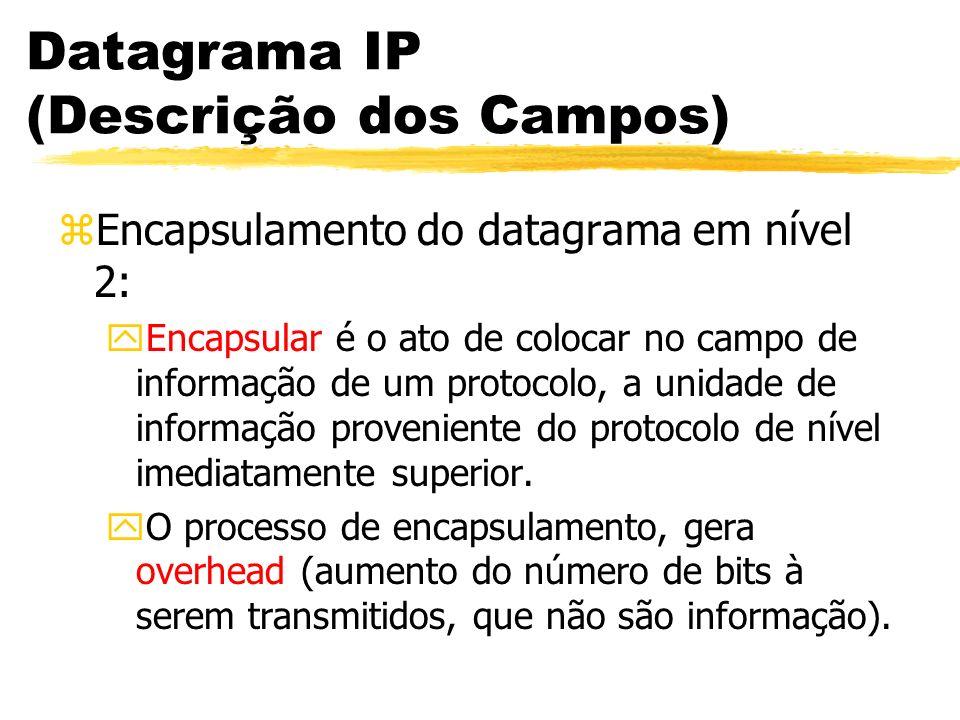 Datagrama IP (Descrição dos Campos) zEncapsulamento do datagrama em nível 2: yEncapsular é o ato de colocar no campo de informação de um protocolo, a unidade de informação proveniente do protocolo de nível imediatamente superior.