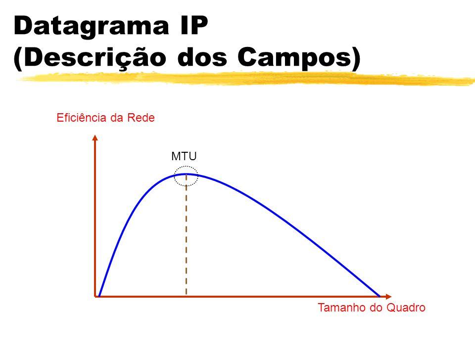 Datagrama IP (Descrição dos Campos) MTU Tamanho do Quadro Eficiência da Rede