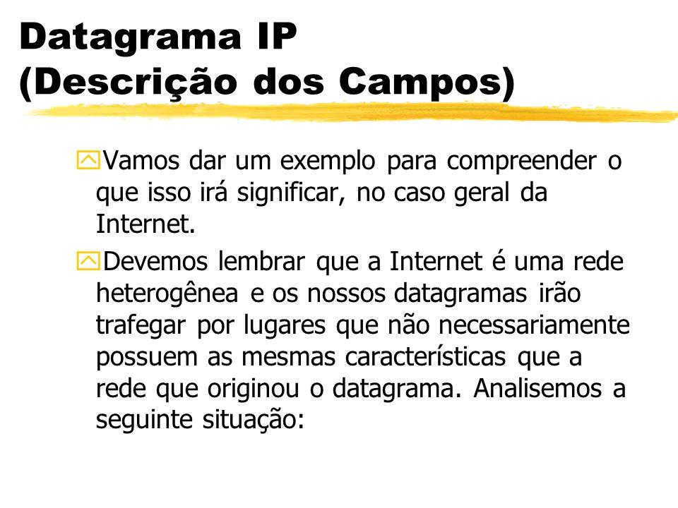 Datagrama IP (Descrição dos Campos) yVamos dar um exemplo para compreender o que isso irá significar, no caso geral da Internet. yDevemos lembrar que
