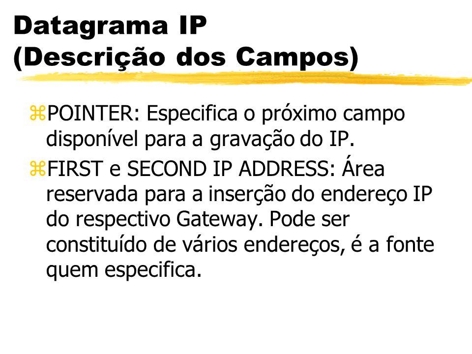 Datagrama IP (Descrição dos Campos) zPOINTER: Especifica o próximo campo disponível para a gravação do IP. zFIRST e SECOND IP ADDRESS: Área reservada