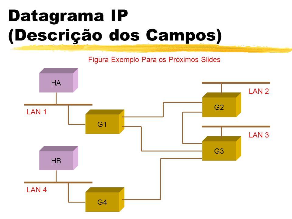 Datagrama IP (Descrição dos Campos) HA LAN 1 LAN 2 G1 G2 LAN 3 G3 HB LAN 4 G4 Figura Exemplo Para os Próximos Slides