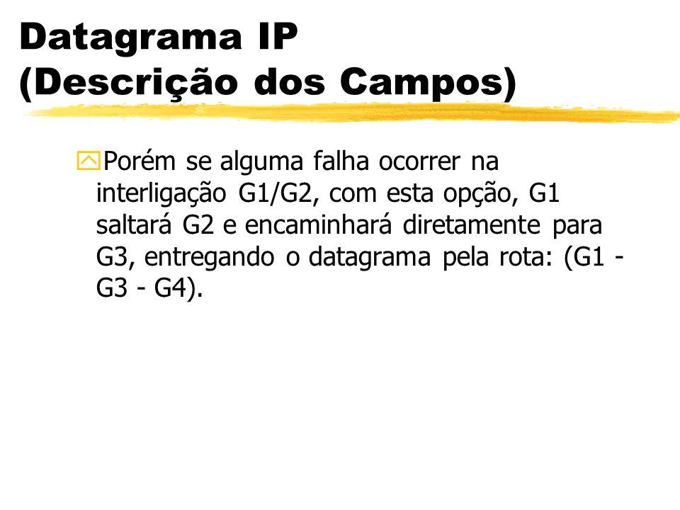 Datagrama IP (Descrição dos Campos) yPorém se alguma falha ocorrer na interligação G1/G2, com esta opção, G1 saltará G2 e encaminhará diretamente para G3, entregando o datagrama pela rota: (G1 - G3 - G4).