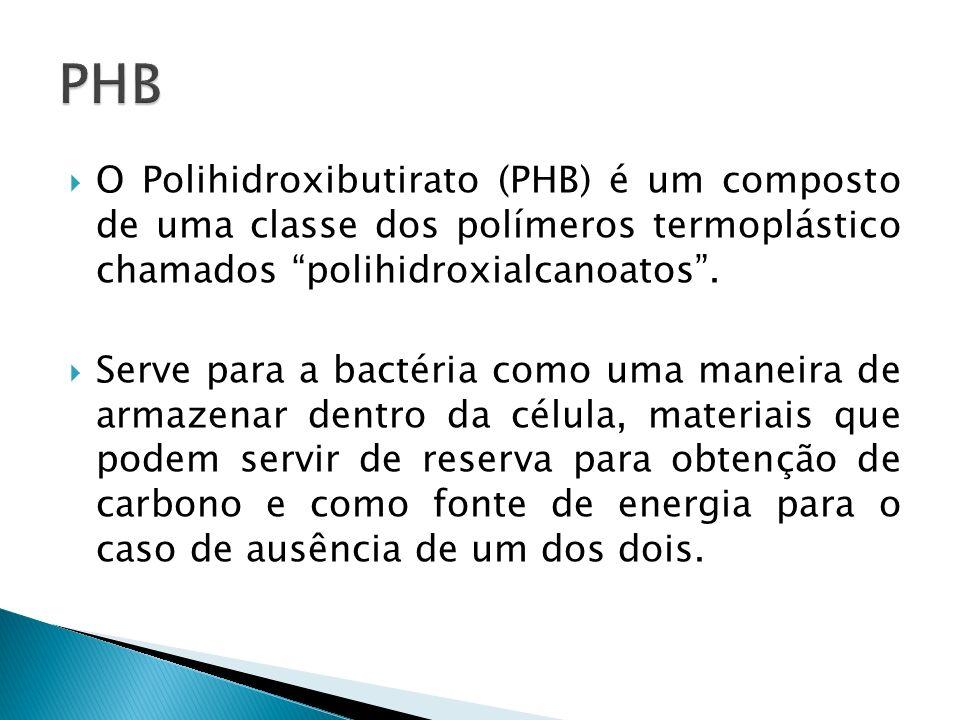 O Polihidroxibutirato (PHB) é um composto de uma classe dos polímeros termoplástico chamados polihidroxialcanoatos. Serve para a bactéria como uma man
