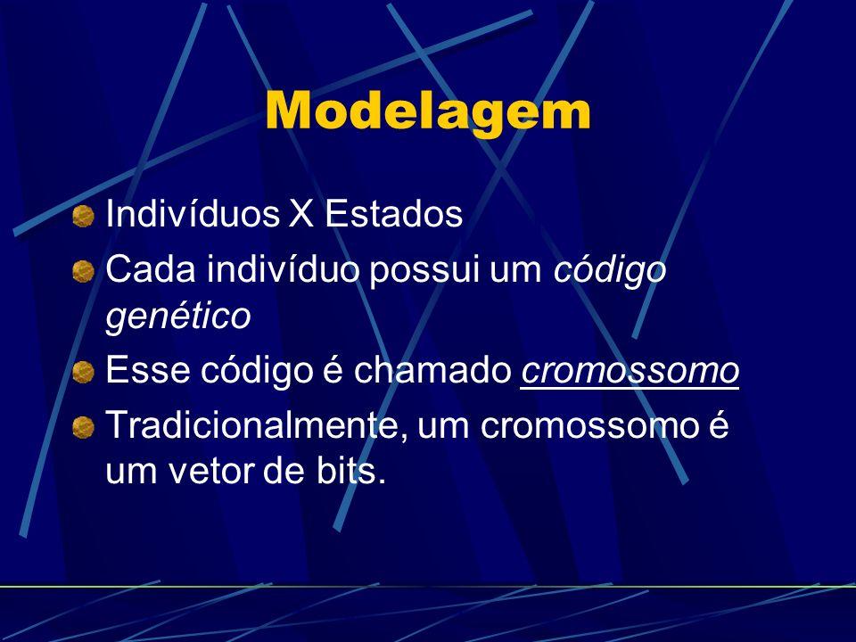 Modelagem Indivíduos X Estados Cada indivíduo possui um código genético Esse código é chamado cromossomo Tradicionalmente, um cromossomo é um vetor de bits.