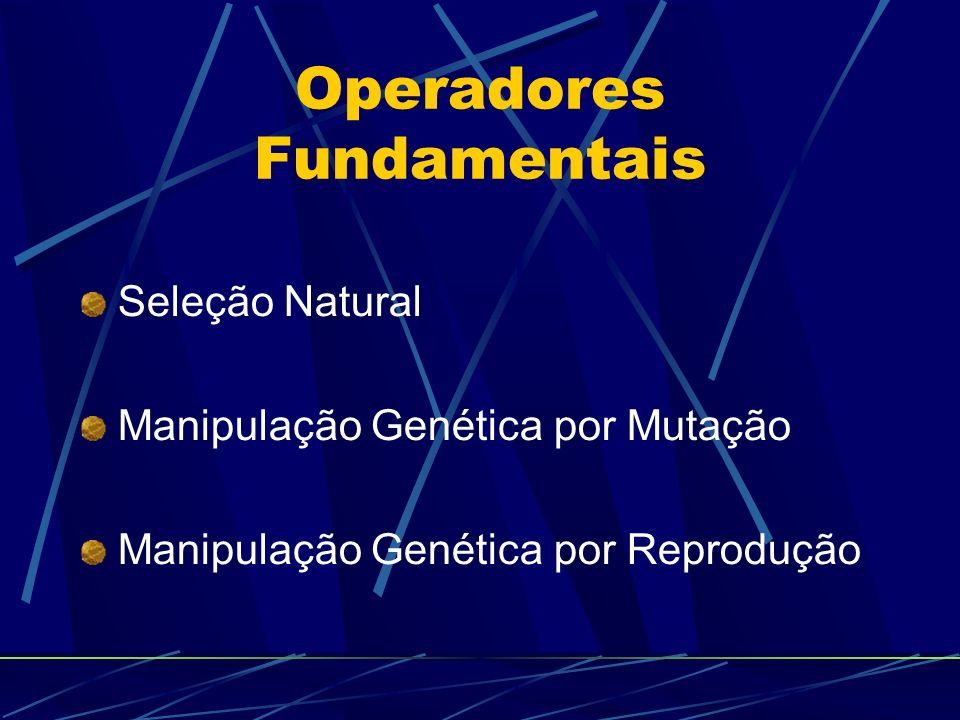 Operadores Fundamentais Seleção Natural Manipulação Genética por Mutação Manipulação Genética por Reprodução