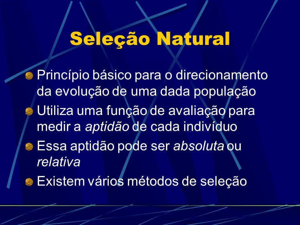 Seleção Natural Princípio básico para o direcionamento da evolução de uma dada população Utiliza uma função de avaliação para medir a aptidão de cada indivíduo Essa aptidão pode ser absoluta ou relativa Existem vários métodos de seleção