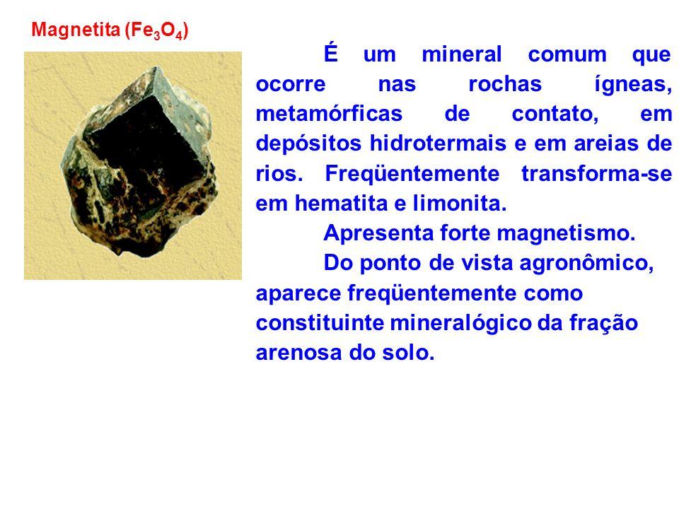 Magnetita (Fe 3 O 4 ) É um mineral comum que ocorre nas rochas ígneas, metamórficas de contato, em depósitos hidrotermais e em areias de rios. Freqüen