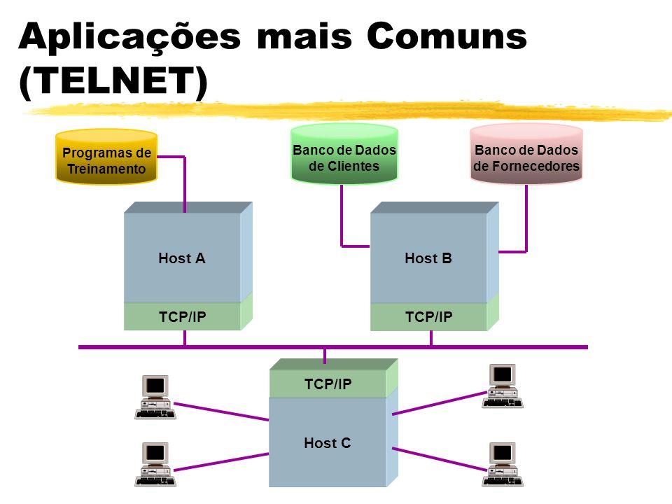 Aplicações mais Comuns (TELNET) Host C TCP/IP Programas de Treinamento Banco de Dados de Clientes Banco de Dados de Fornecedores Host AHost B TCP/IP