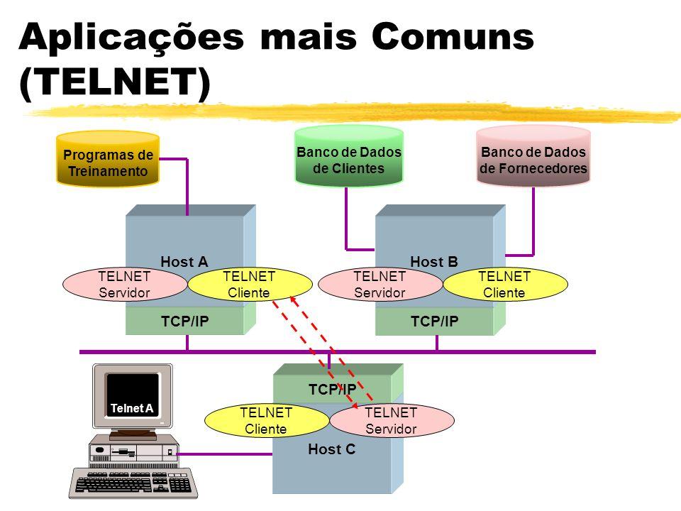 Aplicações mais Comuns (TELNET) Host C TCP/IP Programas de Treinamento Banco de Dados de Clientes Banco de Dados de Fornecedores Host AHost B TCP/IP T