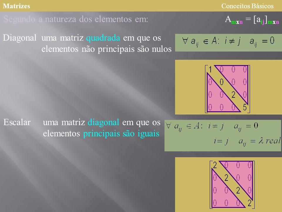 MatrizesConceitos Básicos A mxn = [a ij ] mxn Segundo a natureza dos elementos em: Diagonal Escalar uma matriz quadrada em que os elementos não princi