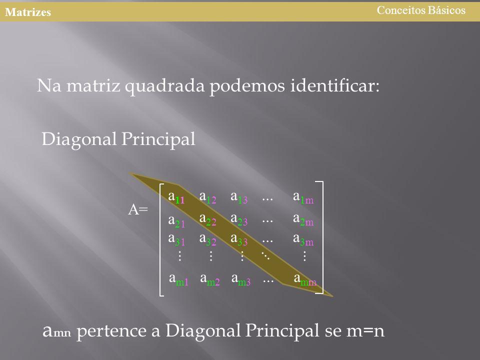 Na matriz quadrada podemos identificar: Diagonal Principal a mn pertence a Diagonal Principal se m=n A= a11a11 a12a12 a13a13 a21a21 a22a22 a23a23 a1ma