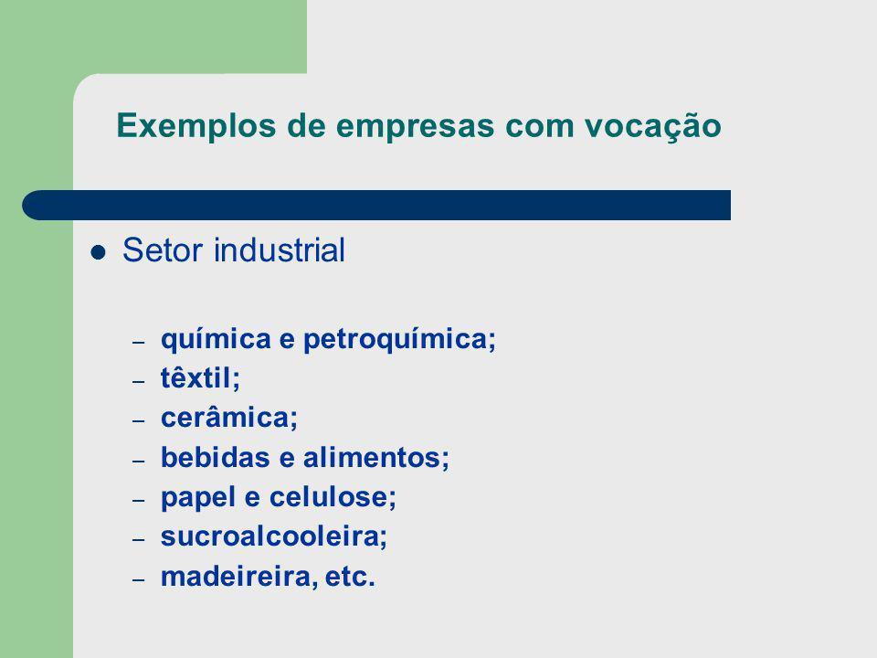 Exemplos de empresas com vocação Setor industrial – química e petroquímica; – têxtil; – cerâmica; – bebidas e alimentos; – papel e celulose; – sucroal