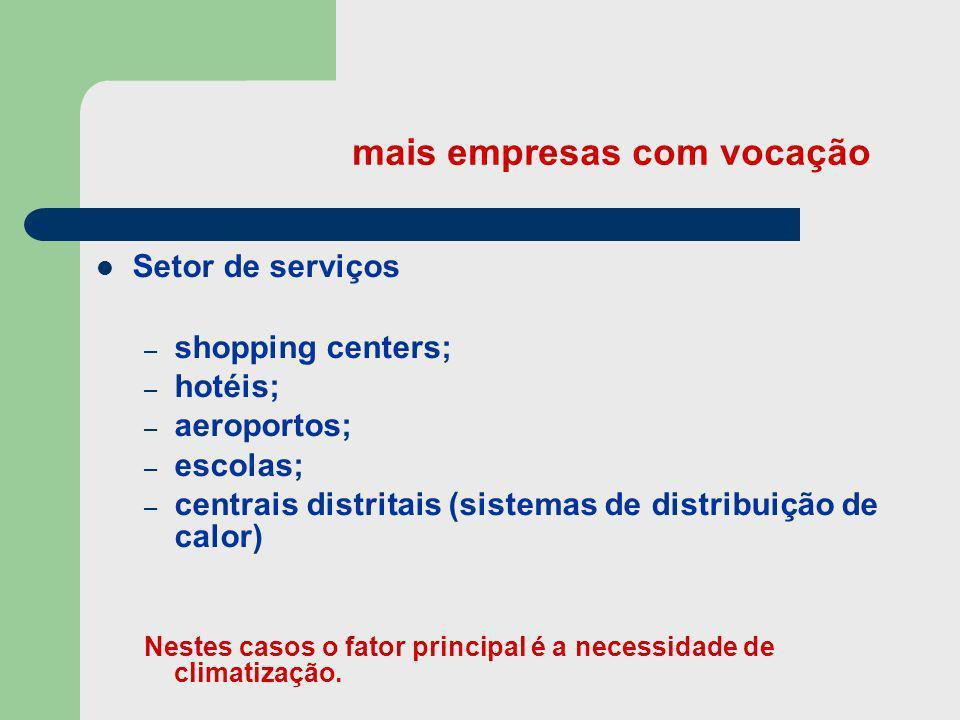 mais empresas com vocação Setor de serviços – shopping centers; – hotéis; – aeroportos; – escolas; – centrais distritais (sistemas de distribuição de