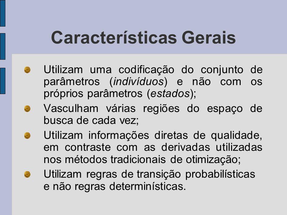 Características Gerais Algoritmos Genéticos podem ser considerados como métodos que trabalham com Buscas Paralelas Randômicas Direcionadas