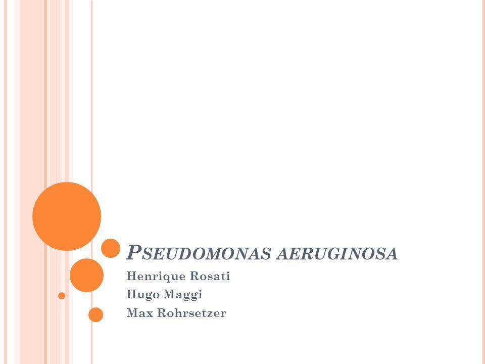 P SEUDOMONAS AERUGINOSA Henrique Rosati Hugo Maggi Max Rohrsetzer