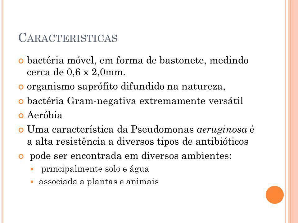 C ARACTERISTICAS bactéria móvel, em forma de bastonete, medindo cerca de 0,6 x 2,0mm. organismo saprófito difundido na natureza, bactéria Gram-negativ