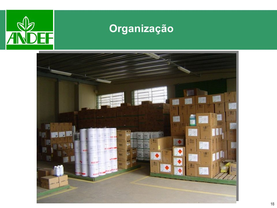 17 Organização