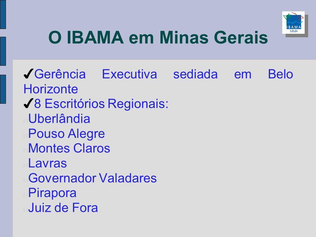 O IBAMA em Minas Gerais Gerência Executiva sediada em Belo Horizonte 8 Escritórios Regionais: Uberlândia Pouso Alegre Montes Claros Lavras Governador
