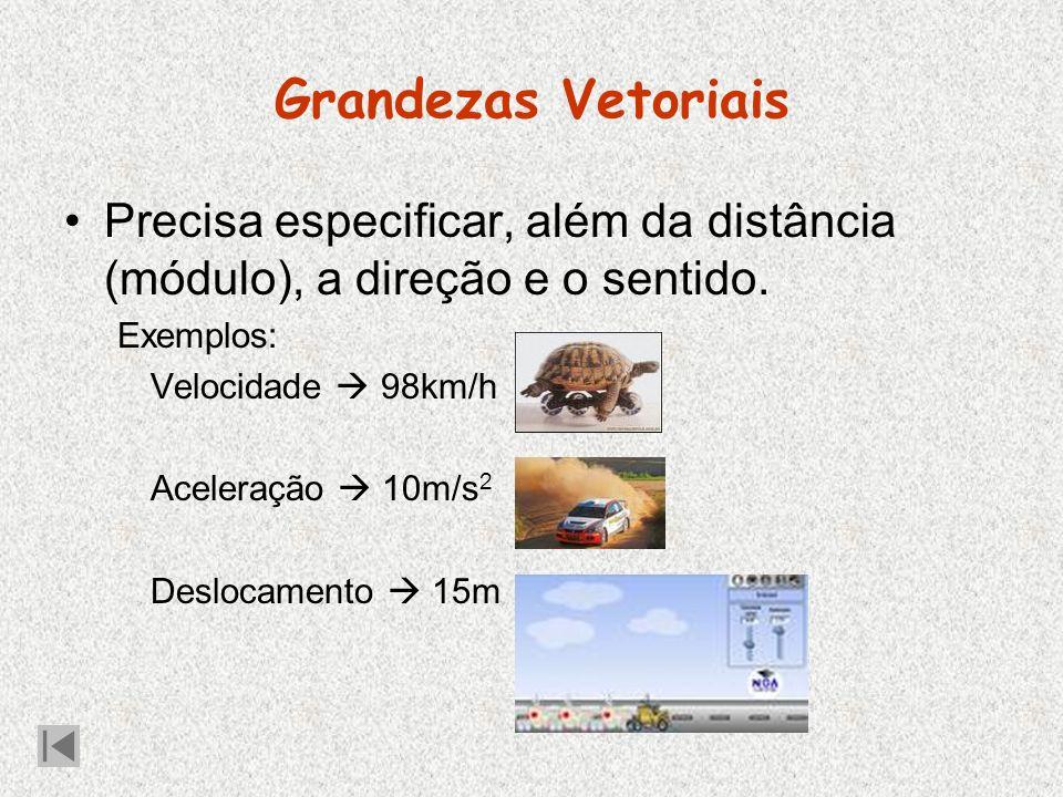 Grandezas Vetoriais Precisa especificar, além da distância (módulo), a direção e o sentido.