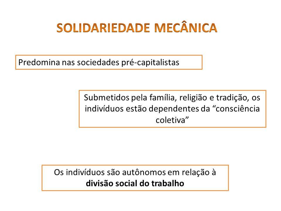 É típica das sociedades capitalistas, na qual ocorre a acelerada divisão social do trabalho.