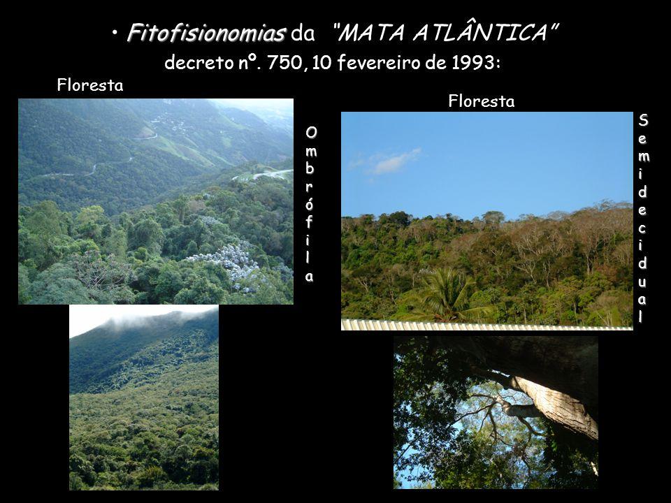 Fitofisionomias Fitofisionomias da MATA ATLÂNTICA decreto nº. 750, 10 fevereiro de 1993: Floresta OmbrófilaOmbrófilaOmbrófilaOmbrófila SemidecidualSem