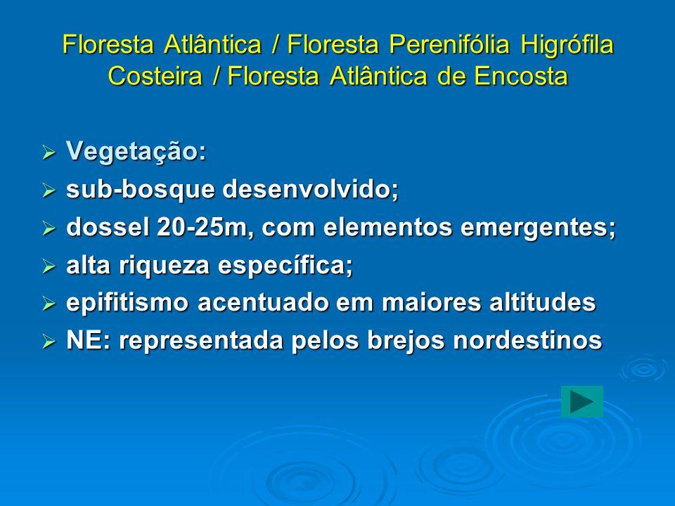 Floresta Atlântica / Floresta Perenifólia Higrófila Costeira / Floresta Atlântica de Encosta Vegetação: Vegetação: sub-bosque desenvolvido; sub-bosque