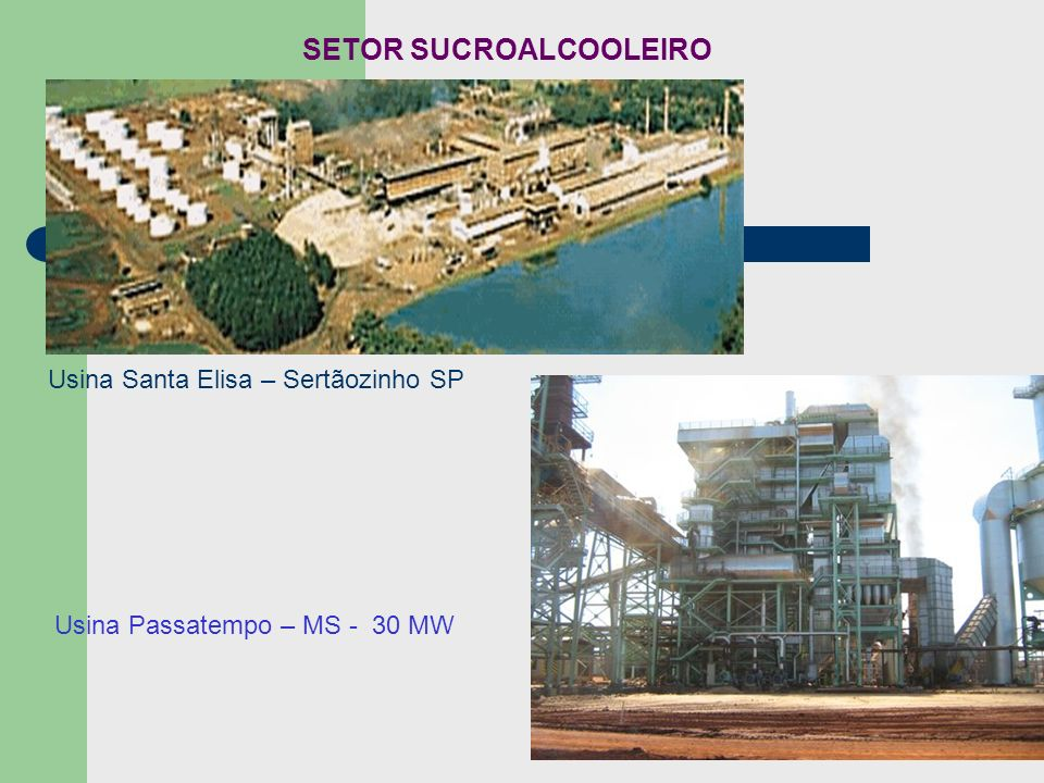 Usina Santa Elisa – Sertãozinho SP Usina Passatempo – MS - 30 MW SETOR SUCROALCOOLEIRO