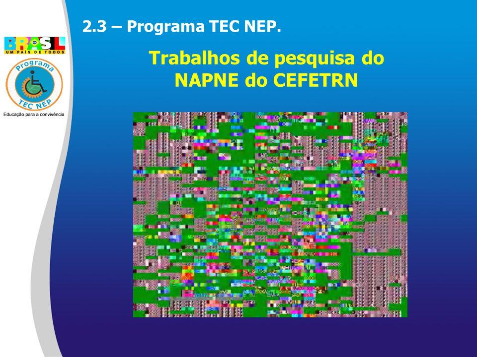 2.3 – Programa TEC NEP. Trabalhos de pesquisa do NAPNE do CEFETRN