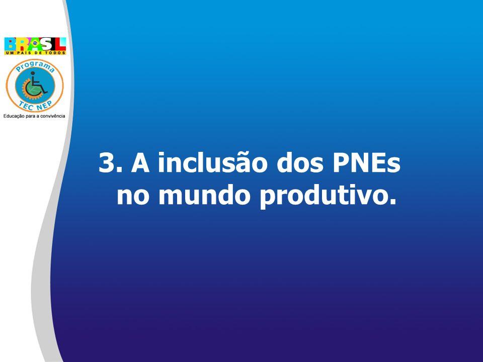 3. A inclusão dos PNEs no mundo produtivo.