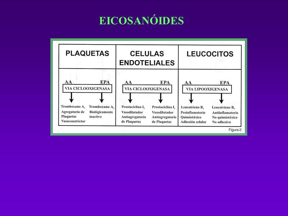 EICOSANÓIDES