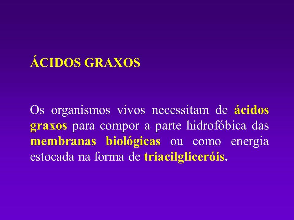 ÁCIDOS GRAXOS Os organismos vivos necessitam de ácidos graxos para compor a parte hidrofóbica das membranas biológicas ou como energia estocada na for