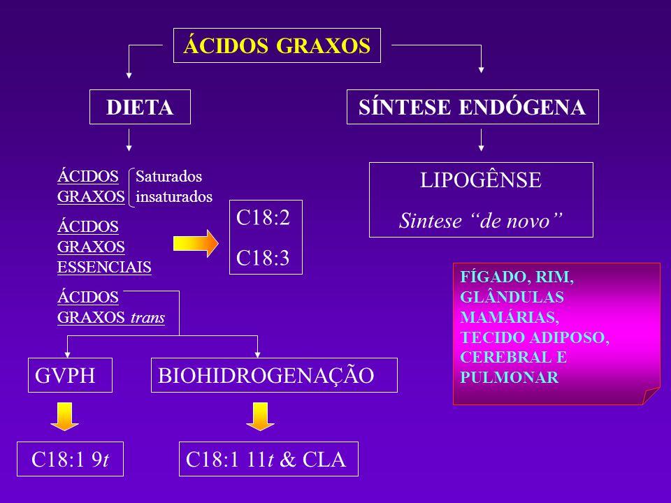 ÁCIDOS GRAXOS DIETASÍNTESE ENDÓGENA ÁCIDOS GRAXOS ÁCIDOS GRAXOS ESSENCIAIS ÁCIDOS GRAXOS trans LIPOGÊNSE Sintese de novo C18:2 C18:3 GVPHBIOHIDROGENAÇ