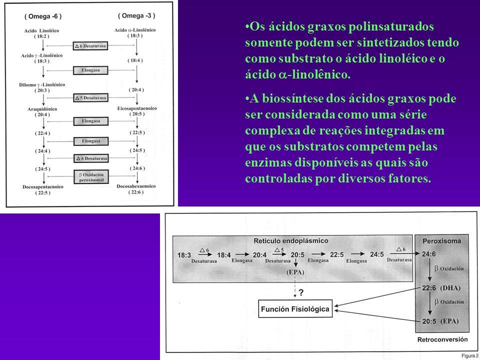 Os ácidos graxos polinsaturados somente podem ser sintetizados tendo como substrato o ácido linoléico e o ácido -linolênico. A biossíntese dos ácidos