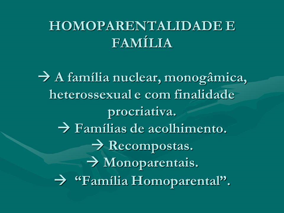 HOMOPARENTALIDADE E FAMÍLIA A família nuclear, monogâmica, heterossexual e com finalidade procriativa. Famílias de acolhimento. Recompostas. Monoparen