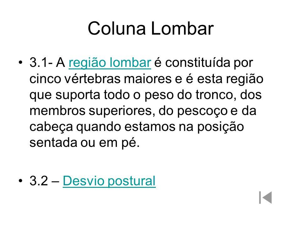Coluna Lombar 3.1- A região lombar é constituída por cinco vértebras maiores e é esta região que suporta todo o peso do tronco, dos membros superiores