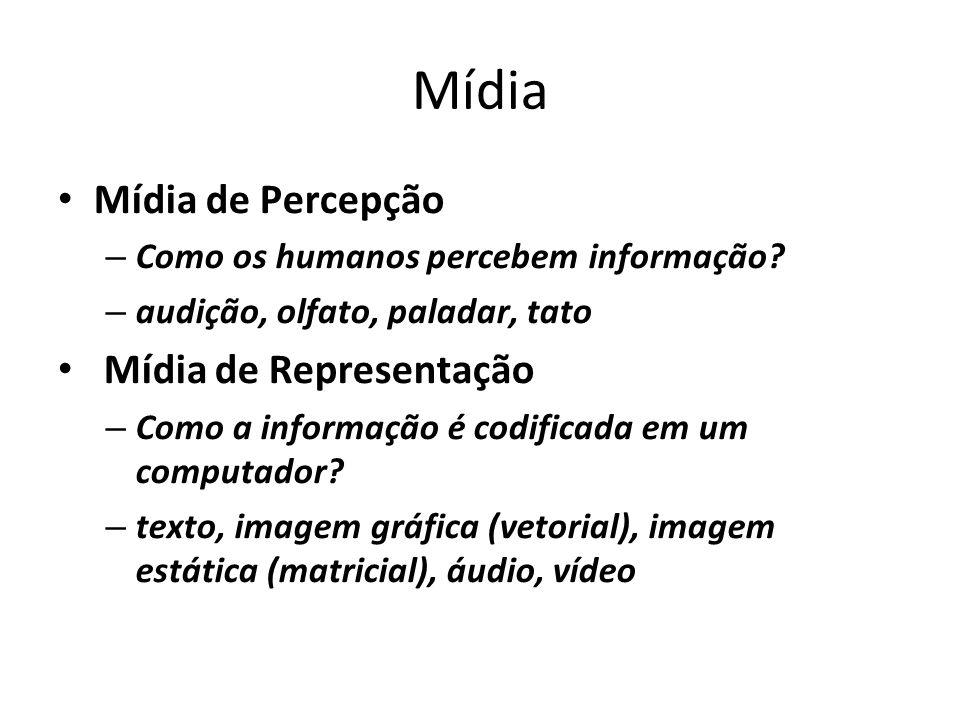 Mídia Mídia de Percepção – Como os humanos percebem informação? – audição, olfato, paladar, tato Mídia de Representação – Como a informação é codifica