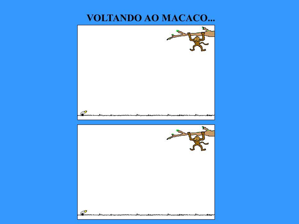 VOLTANDO AO MACACO...