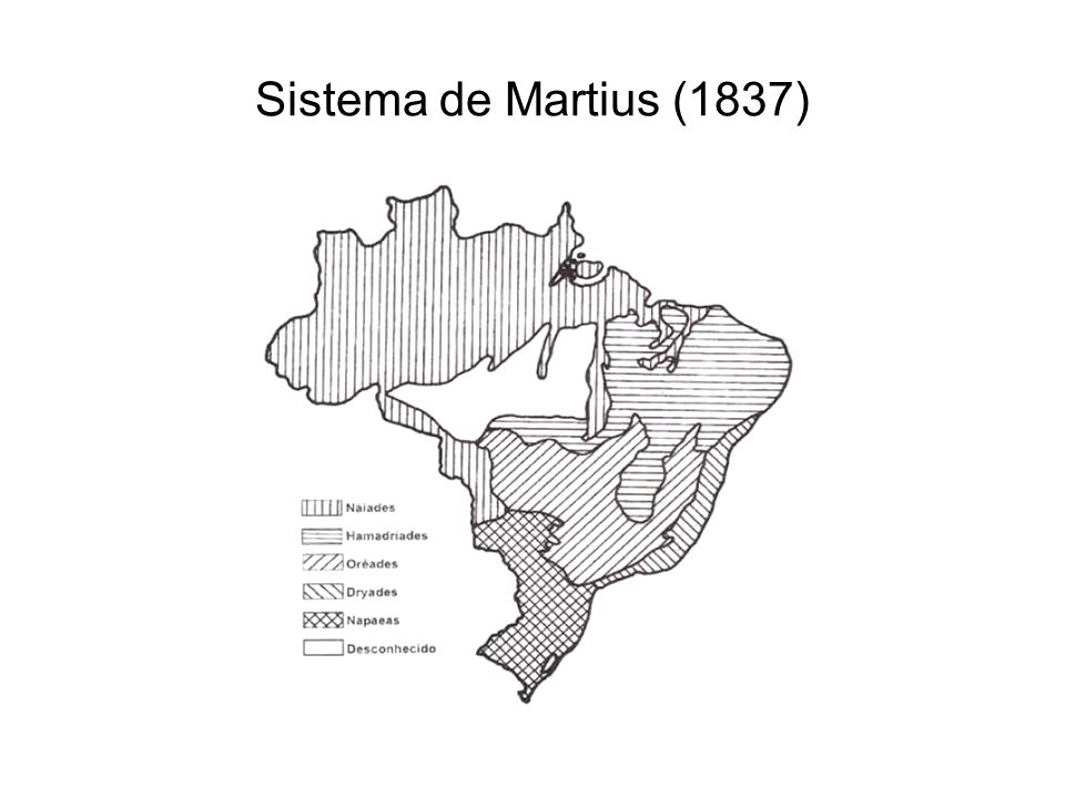 Sistema de Martius (1837)