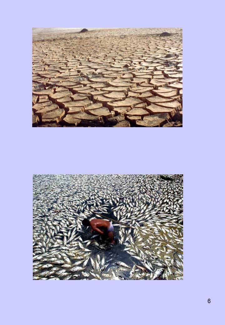 17 COMISSÃO MUNDIAL PARA O MEIO AMBIENTE E O DESENVOLVIMENTO (1987) –no início da década de 1980, a ONU retomou o debate das questões ambientais.1980ONU –indicada pela entidade, a primeira-ministra da Noruega, Gro Harlem Brundtland, chefiou a Comissão Mundial sobre o Meio Ambiente e Desenvolvimento, para estudar o assunto.