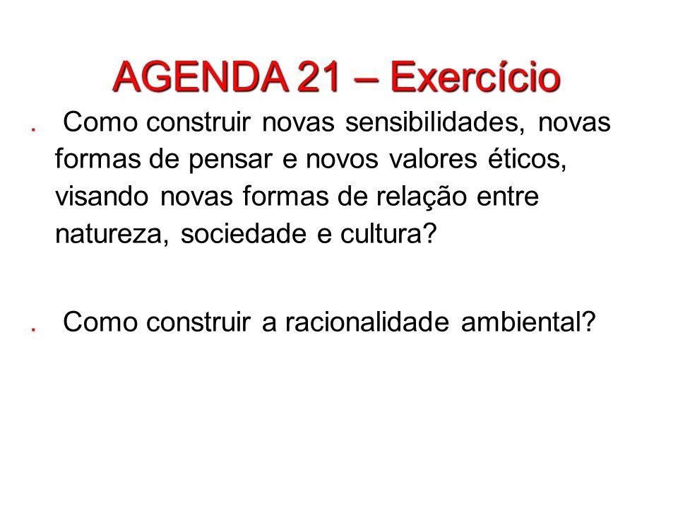 AGENDA 21 – Exercício. Como construir novas sensibilidades, novas formas de pensar e novos valores éticos, visando novas formas de relação entre natur