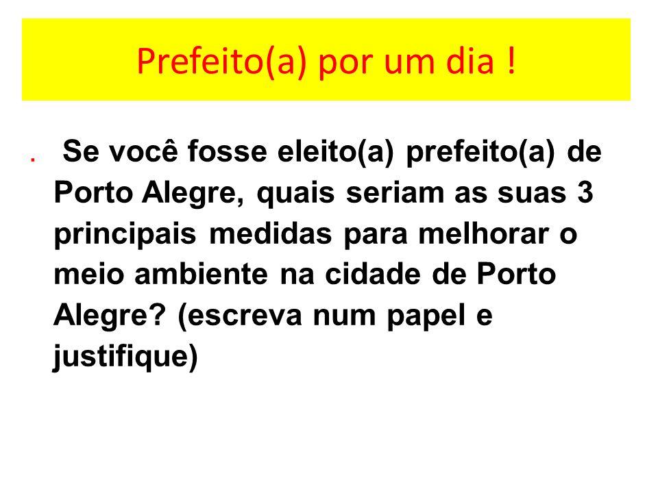 Prefeito(a) por um dia !. Se você fosse eleito(a) prefeito(a) de Porto Alegre, quais seriam as suas 3 principais medidas para melhorar o meio ambiente