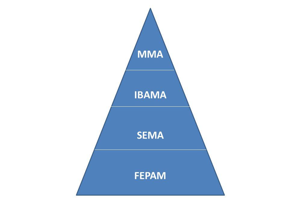 MMA IBAMA SEMA FEPAM