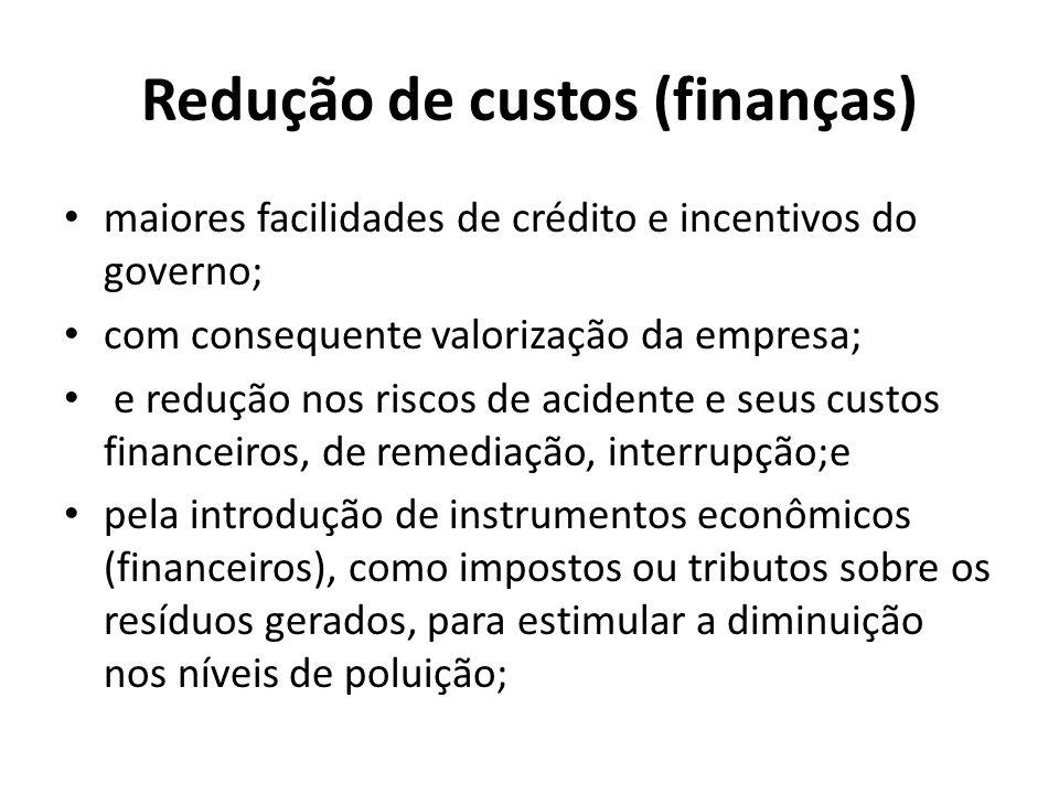 Redução de custos (finanças) maiores facilidades de crédito e incentivos do governo; com consequente valorização da empresa; e redução nos riscos de a