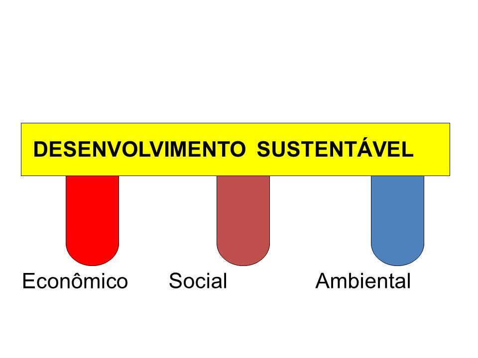 Econômico DESENVOLVIMENTO SUSTENTÁVEL SocialAmbiental