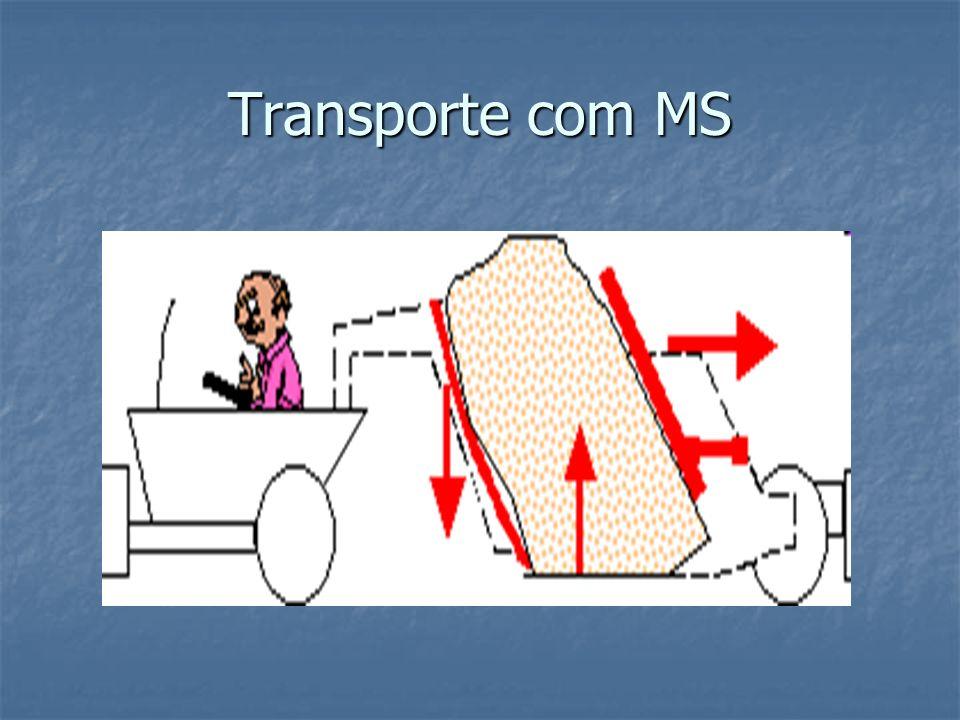 Transporte com MS